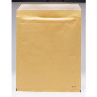 GoSecure Bubble Env Size 5 Gold Pk100