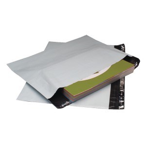 GoSecure C5 Envelope Ex Strong Pk100