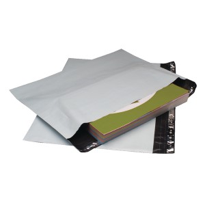 GoSecure Env 600x700mm Ex Strong Pk50