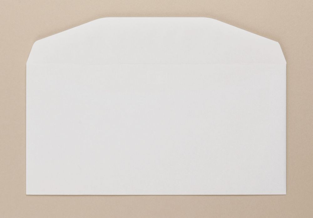 Severn Envelope White Wove 80gm DL 110x220mm Gummed Flapped Boxed 1000
