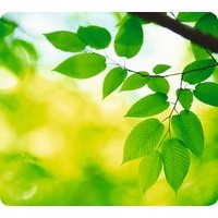 Fellowes Earth Series Recycled Mousepad Leaves Ref 5903801