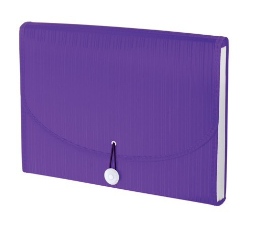 GLO Expanding File 12 Part Purple