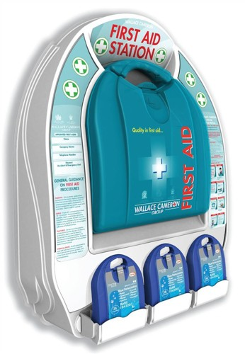 Wallace Cameron First-Aid Station Small Wall Panel with Mezzo HS110 Person Kit Ref 1014032