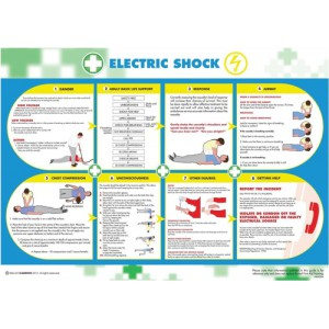 Wallace Cameron Electric Shock Poster Laminated Wall-mountable 590x420mm Code 5405026