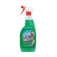 Mr Muscle Window/Glass Cleaner 750ml 7516583