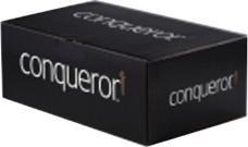 Conqueror Env DL Win H/WhtWove P&S Pk500