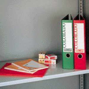 Bisley Standard Shelf for Cupboard Grey Ref BBS