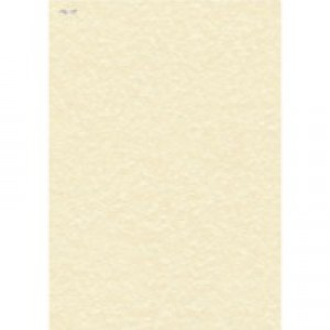 Letterhead Presentation Paper Everyday 95gsm A4 Champagne [100 Sheets]