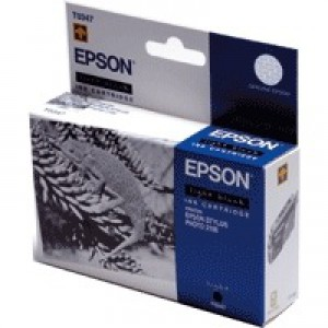 Epson Stylus Photo 2100 Inkjet Cartridge Light Black 17ml C13T034740