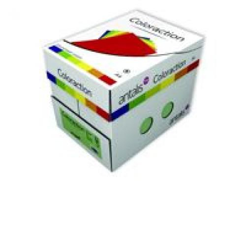 Coloraction Tinted Paper Pastel Green (Forest) FSC4 A4 210X297mm 120Gm2 Pack 250