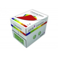 Image for Coloraction Tinted A4 Paper 80Gsm Palel Yellow Pk500 (Desert)