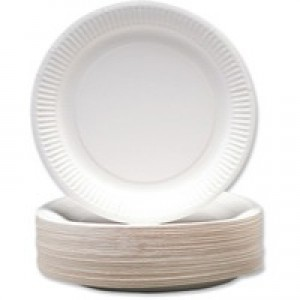 Paper Plate 9 Inch White Pk 100 KBLRY1642