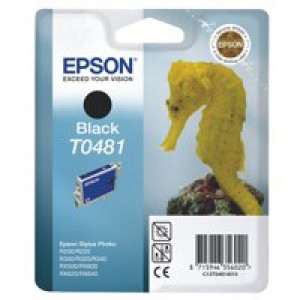 Epson R300/RX500 Inkjet Cartridge Black 13ml T0481 C13T048140