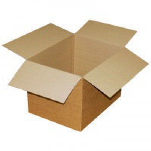 Single-Wall Carton 305x254x254mm Pack of 25 SC-11