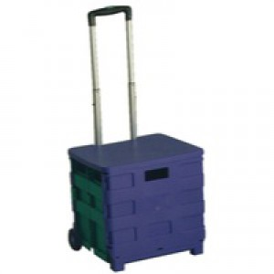Folding Container Trolley/Lid Blue/Green 379531