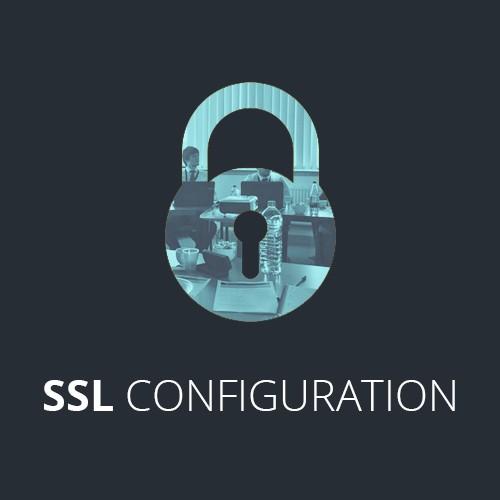Setup & Maintenance for SSL Certificate on PrimaGO (12 month period)