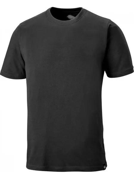 Dickies Cotton T Shirt - Slate - XXL