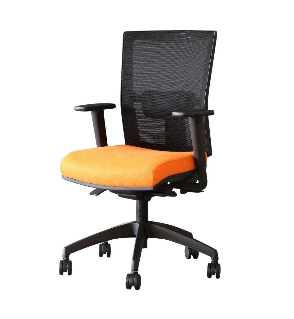 Sensit-Lite  Premium Mesh Back Task Chair - Adjustable Arms Band 1 Fabric
