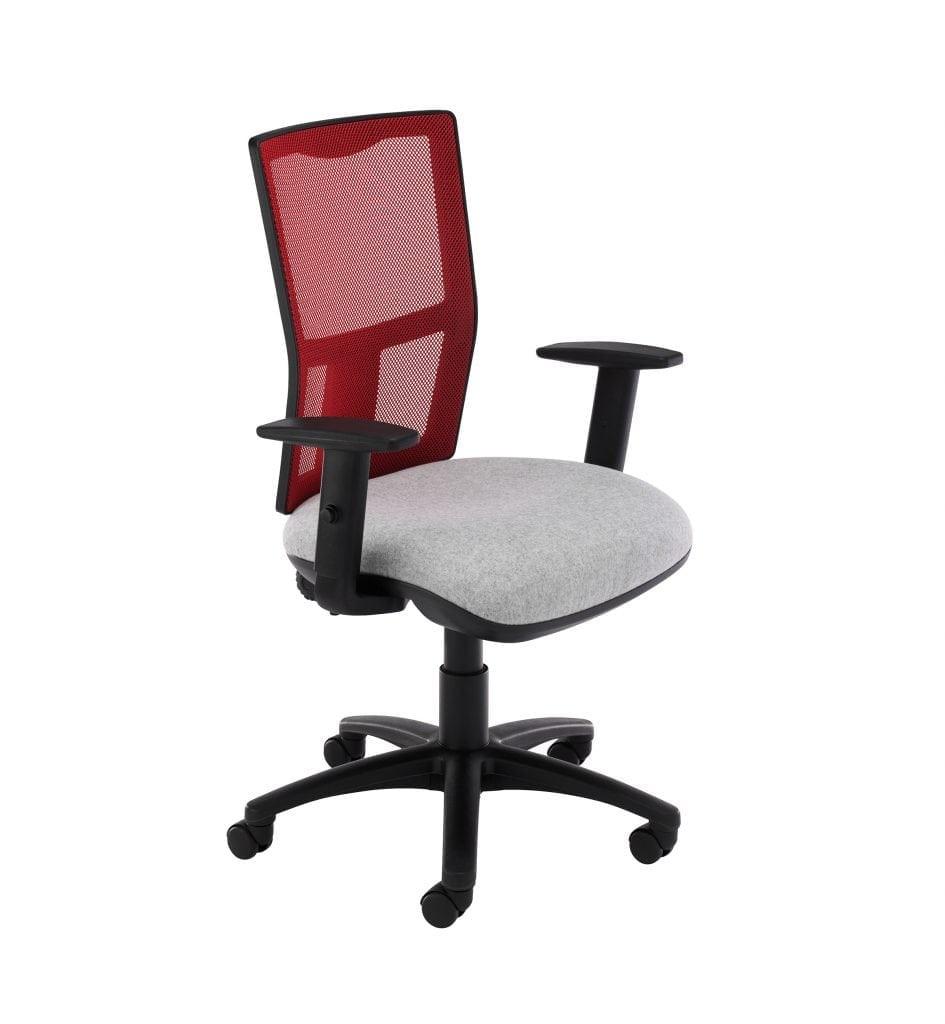 E-Lite  Mesh Back Task Chair - Band 1 fabric Adjustable Arms