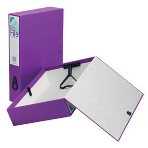 Initiative Clrd Box File A4/Fc Purple