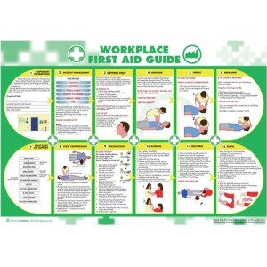 Wallace Cameron Health and Safety Poster Workplace First Aid Guide 840x590mm 5405025